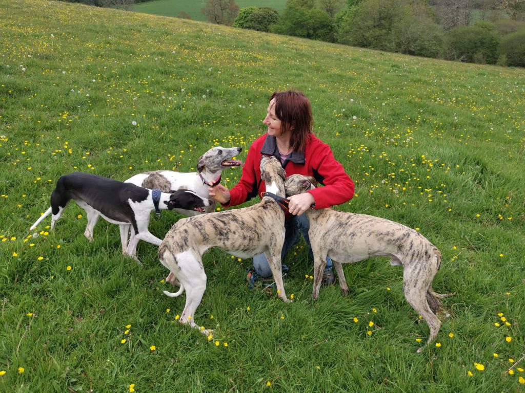 Sammie with some of her own dogs.